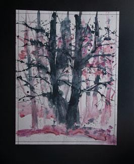 matin rose dans les bois