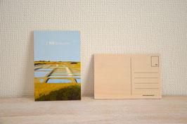 Carte postale - Marais Salants  - [ NO ] irmoutier