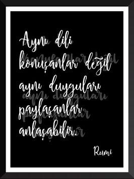 AYNI DILI KONUSANLAR HZ. MEVLANA | Rumi
