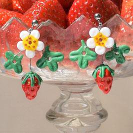 Erdbeerohrringe floral