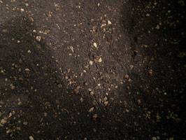 植物有機堆肥配合用土 【ボタニカルソイル】10リットル