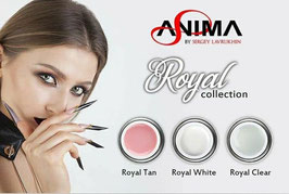 ROYAL GEL collection