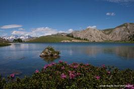 HAUTES ALPES, Lac du Lauzet et massif des Ecrins