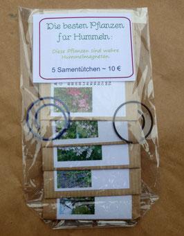 Samenpaket: Die besten Pflanzen für Hummeln