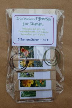 Samenpaket: Die besten Pflanzen für Bienen