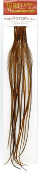Whiting 100 Brown