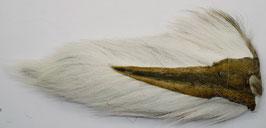NORTHERN BUCKTAIL White