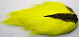 NORTHERN BUCKTAIL Fl. Yellow