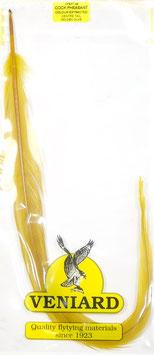 Veniard PHEASANT TAIL FEATHER Golden Olive