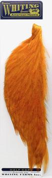 Whiting 1/2 CAPE Orange