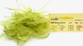 Marc Petitjean CDC #14 Dirty Yellow