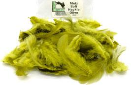 Hareline METZ SOFT HACKLE Olive MH263