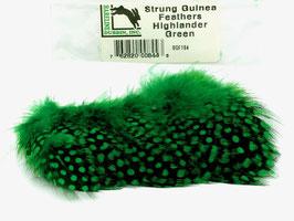 Hareline STRUNG GUINEA FEATHERS Highlander Green SGF184