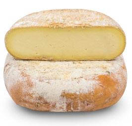 Queso Mahon aus Menorca