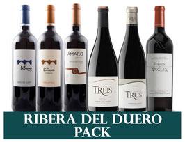 Weine aus Ribera del Duero (6x1 Flasche) & 1 Zapfenzieher