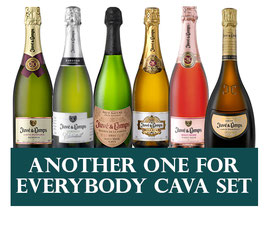 Another Cava for everybody Set (6 x 1 Flasche)