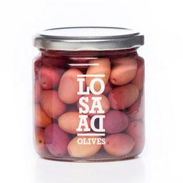 Oliven Cornicabra mit Stein