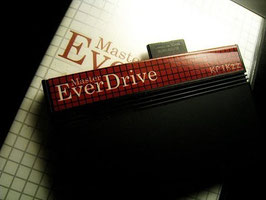 EVERDRIVE SEGA MASTER SYSTEM II SD 4GB FW2020