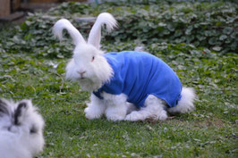 Wärmebody Kaninchen
