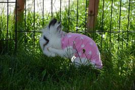 Kaninchenbody nach Bauch-OP´s etc., maßgeschneidert.