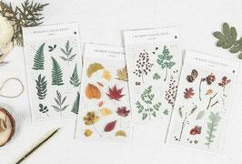 Stickers Plantes Season collection