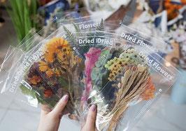 Stickers Fleurs séchées