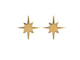 Puces d'oreilles Etoiles polaires dorées