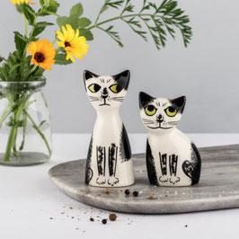 """Poivre et sel """"chats noirs et blancs"""""""