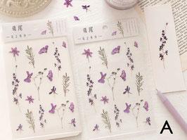 Stickers Plantes Mr Paper