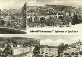 Ansichtskarte - Kunstblumenstadt Sebnitz in Sachsen