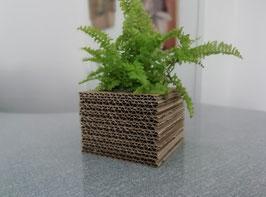 Cache-pot Cube