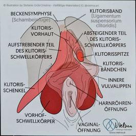 Klitoris Sticker (deutsch)