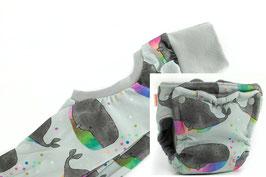 Abhalte Set - Regenbogenwal
