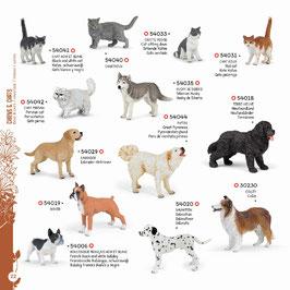 Hundewelt und Katzenwelt