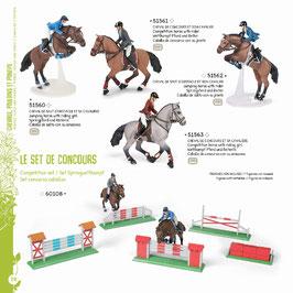 Pferde, Fohlen und Ponys F