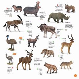 Wildtiere der Welt Set D