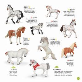 Pferde, Fohlen und Ponys C