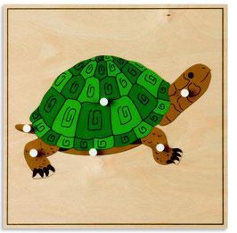 Tierpuzzle - Schildkröte