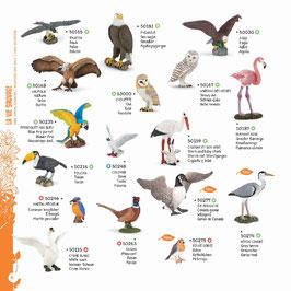Wildtiere der Welt Set C