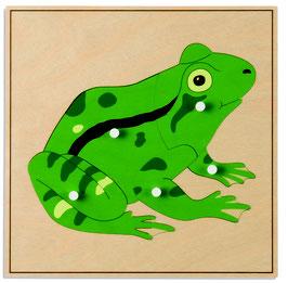 Tierpuzzle - Frosch