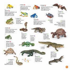 Wildtiere der Welt Set B