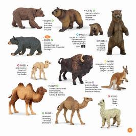 Wildtiere der Welt Set J