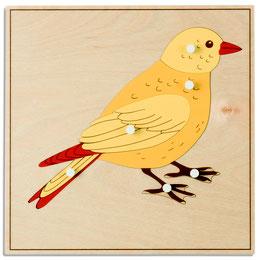 Tierpuzzle - Vogel