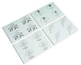 Kopiervorlagen für die Botanischen Puzzles