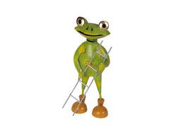 Frosch mit Leiter stehend