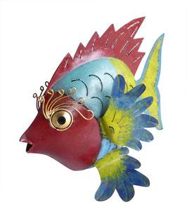Fisch multicolour