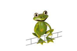 Frosch mit Leiter sitzend