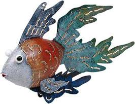 Fisch Schleierschwanz