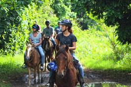 1 Ruta/Safari a caballo.
