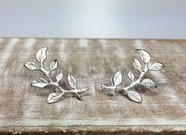 Blätter Ohrstecker matt rhodiniert